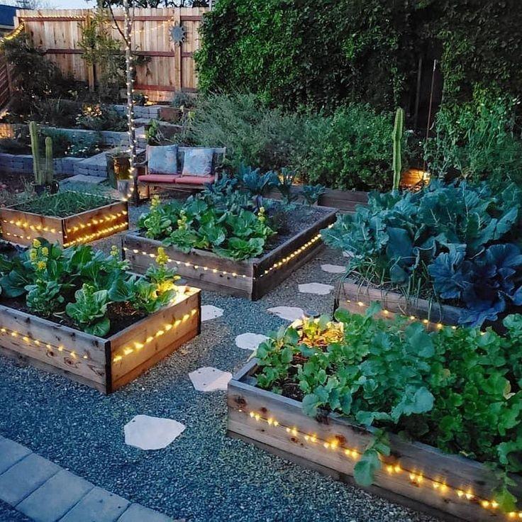 🤔Úžitkova záhradka (inspi) 🍒🍎🍇🥕🌽🥬🥒🍓 - Obrázok č. 37