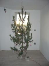 nas prvy stromcek