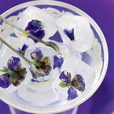 ozdobný ľad do nápojov