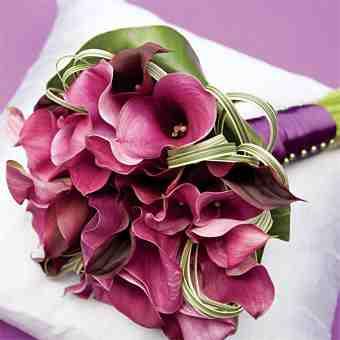 Petra Erik...svadobne pripravy na 15.5.2010 (moje narodeniny) - Obrázok č. 31