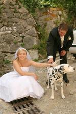 okoloidúci  pes s veľmi sympatickým majiteľom :)