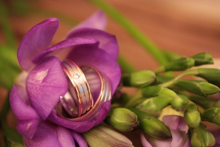 Kristýna{{_AND_}}Míra - Naše krásné prstýnky od Rýdla