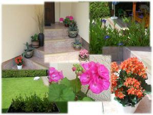 můj první rok zahradničení ;-)