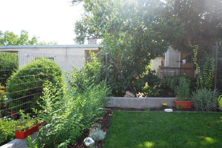 Záhradka - Obrázok č. 3
