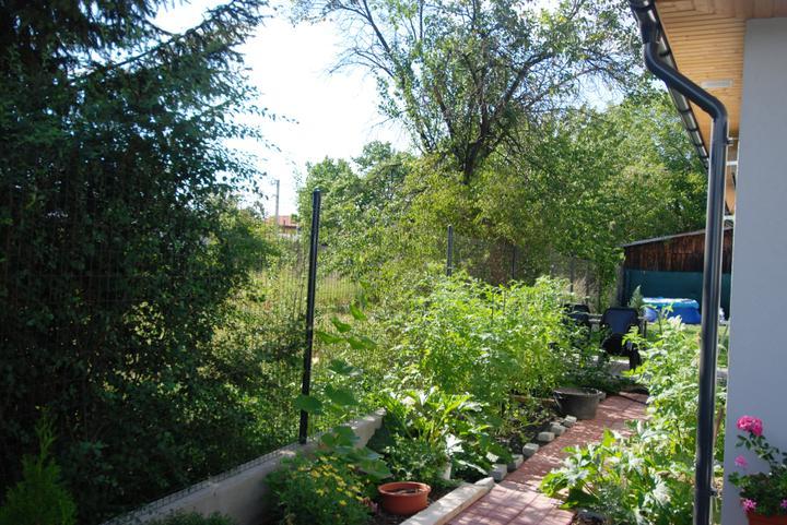 Záhradka - Paradajkove a tekvicove zatisie.