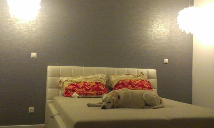 Malý, ale môj. :-) - Teším sa, po pol roku som nalepila tapetu do spálne  a som spokojná. Je taká sivo strieborná. Fotené večer, tak to nie je pekne vidno a ešte aj bez nočných stolíkov.