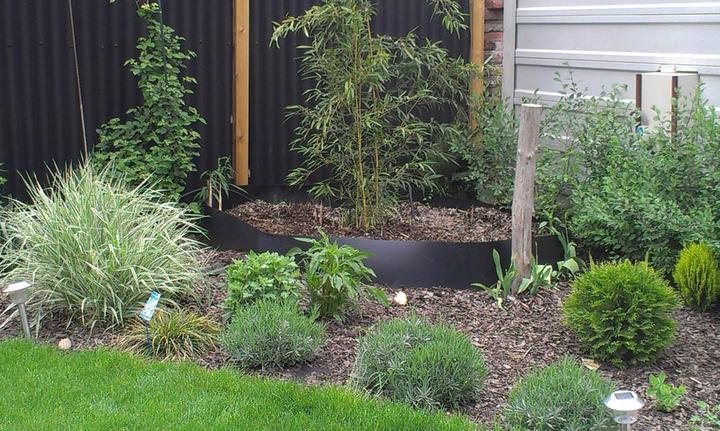 Záhradka - Obrázok č. 48