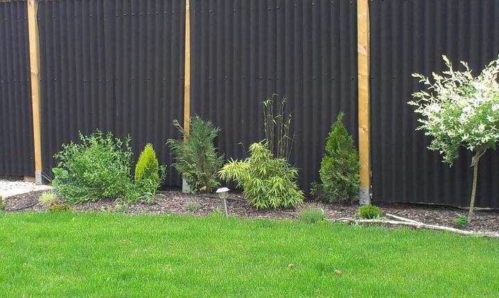 Záhradka - Obrázok č. 62