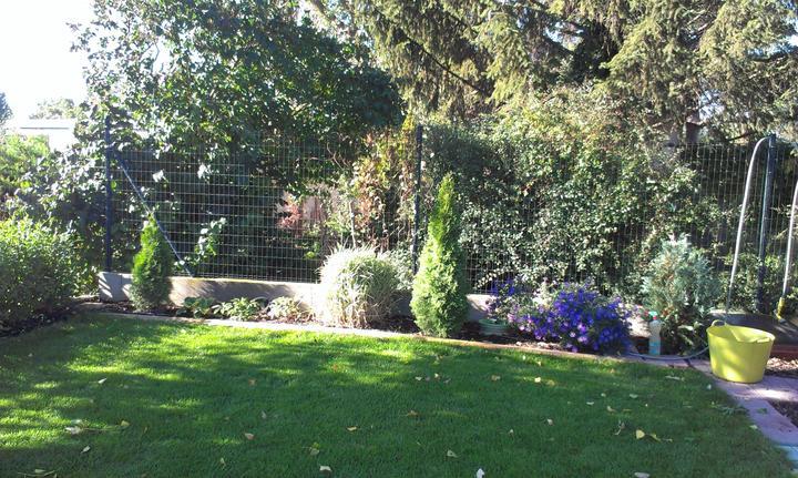 Záhradka - Obrázok č. 69