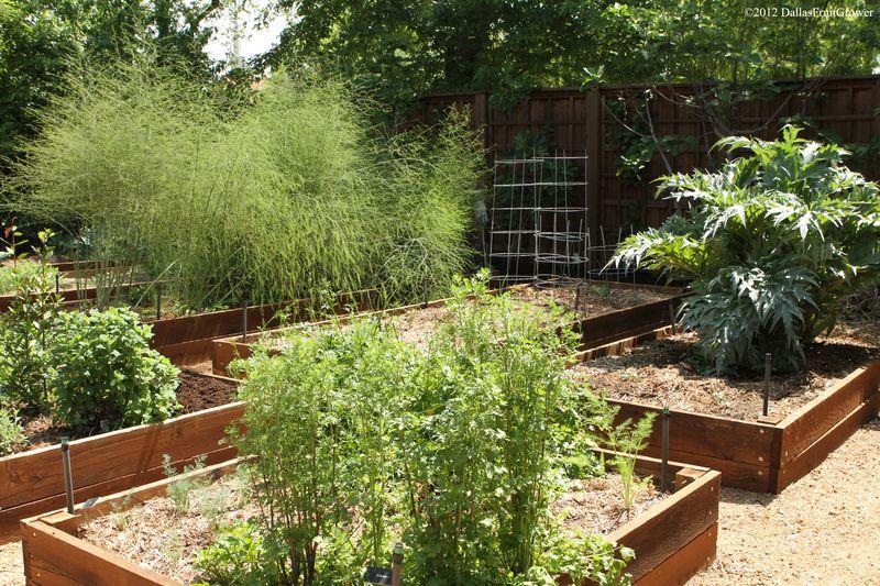 Zeleninová záhradka po novom - Obrázok č. 2