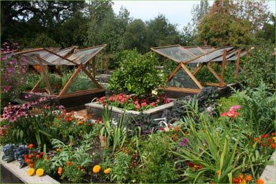 Zeleninová záhradka po novom - Ideálna kombinácia zeleniny s kvetmi