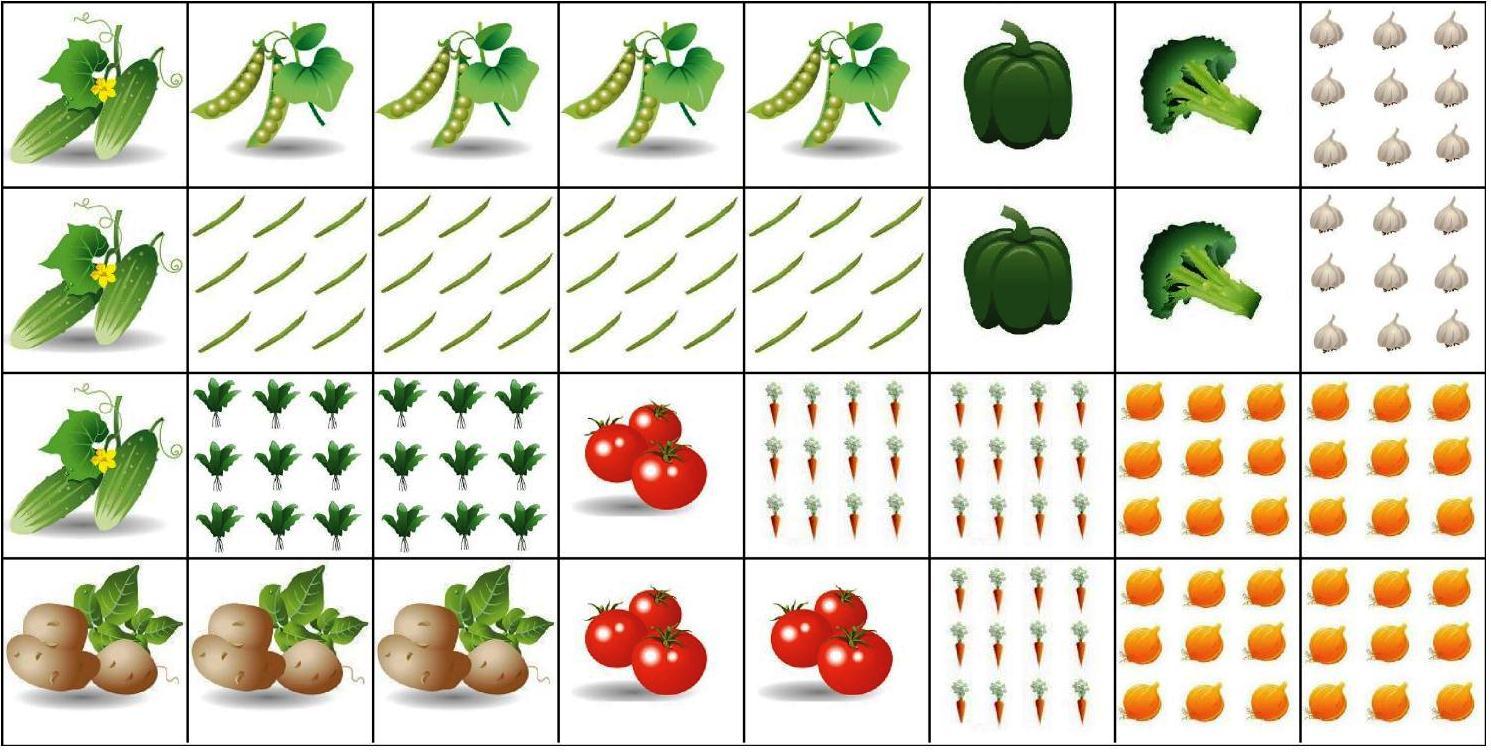 """Zeleninová záhradka po novom - Osevný plán pri rozdelení hriadok na """"stopy"""""""