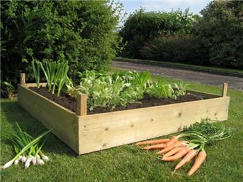 Zeleninová záhradka po novom - Obrázok č. 8