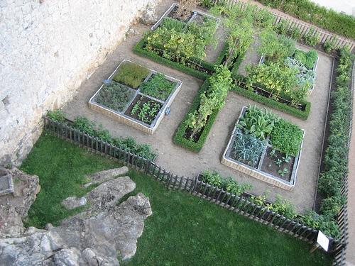 Zeleninová záhradka po novom - Obrázok č. 17