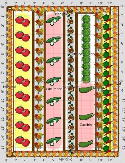 Zeleninová záhradka po novom - Obrázok č. 20