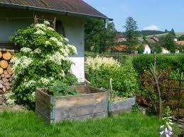 Zeleninová záhradka po novom - Obrázok č. 26