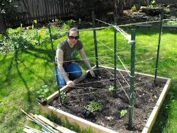 Zeleninová záhradka po novom - Obrázok č. 29