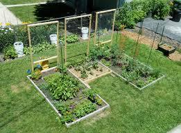 Zeleninová záhradka po novom - Obrázok č. 30