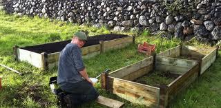 Zeleninová záhradka po novom - Obrázok č. 31