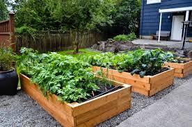 Zeleninová záhradka po novom - Obrázok č. 32