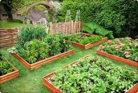 Zeleninová záhradka po novom - Obrázok č. 37