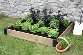 Zeleninová záhradka po novom - Obrázok č. 38