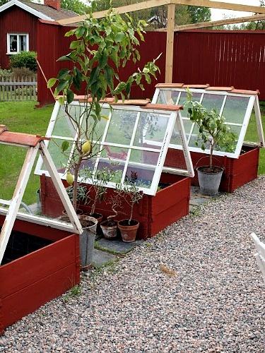 Zeleninová záhradka po novom - Obrázok č. 40