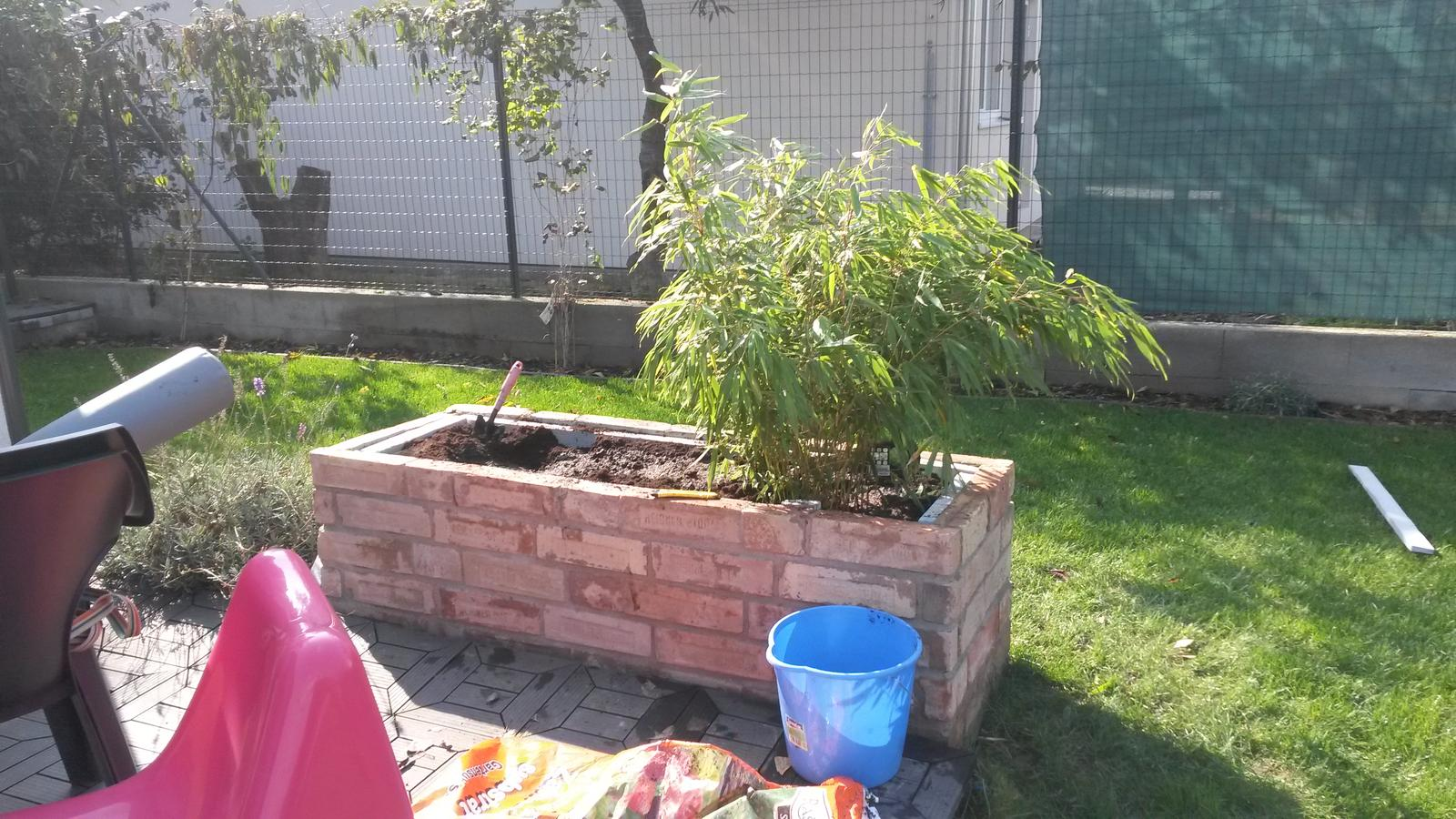 Záhradka - Bola som sikovna. Navlacila som 25 kusov 70 litrovych vriec zeminy do mojich 4 kvetinacov. Dalsi bambustek zasadeny.