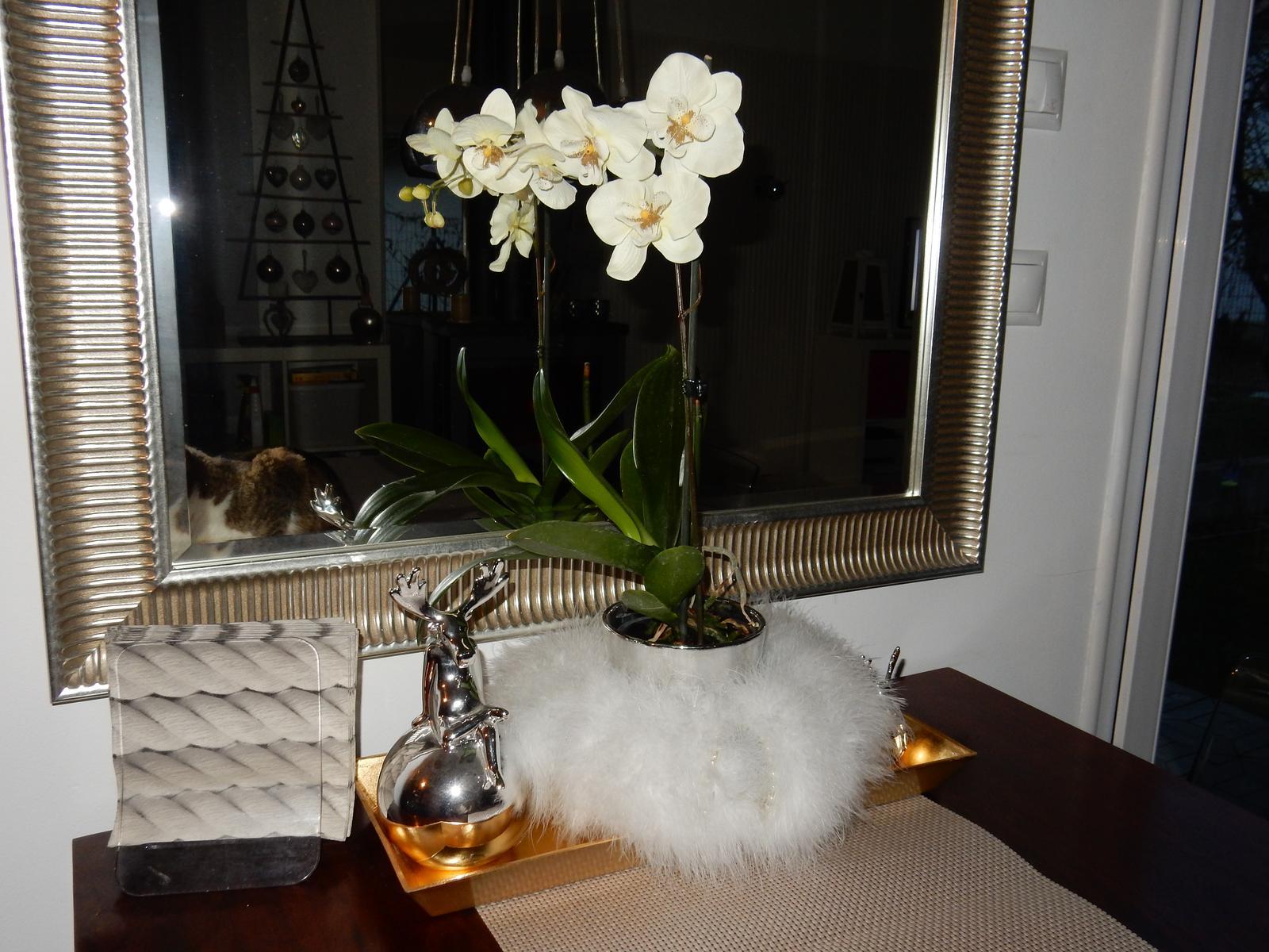 Malý, ale môj. :-) - Kedze mi nekvitne ziadna orchidea, tak som si pomohla. Mam umelu. :-)