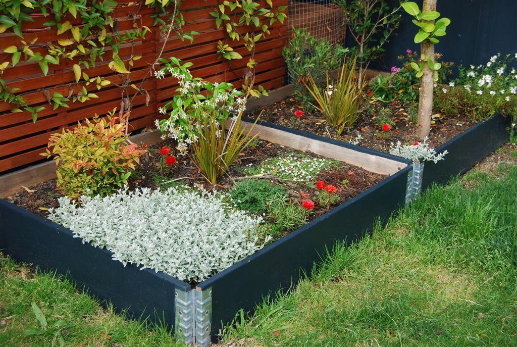 Zeleninová záhradka po novom - Obrázok č. 49