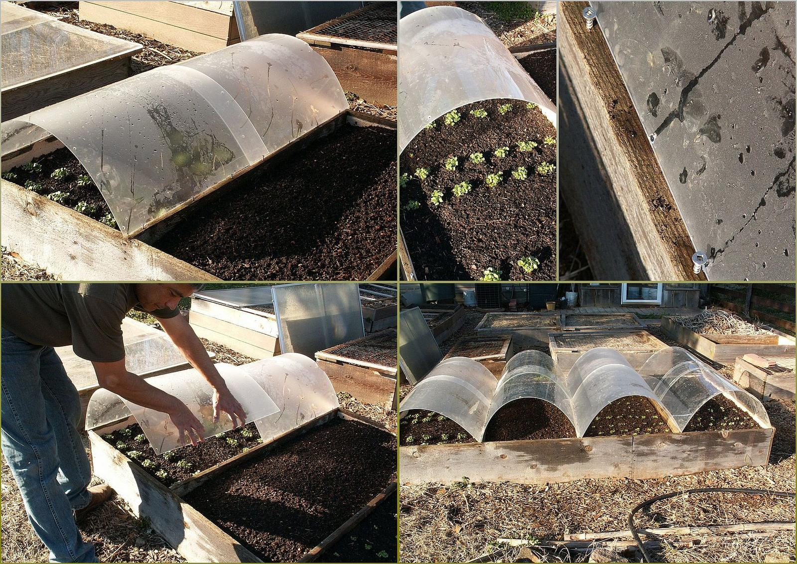 Zeleninová záhradka po novom - Obrázok č. 56