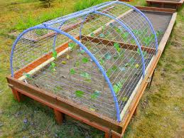 Zeleninová záhradka po novom - Obrázok č. 67