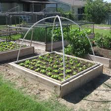 Zeleninová záhradka po novom - Obrázok č. 68