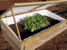 Zeleninová záhradka po novom - Obrázok č. 71