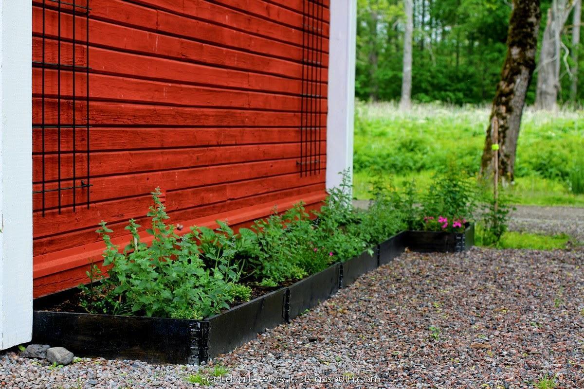 Zeleninová záhradka po novom - Obrázok č. 76