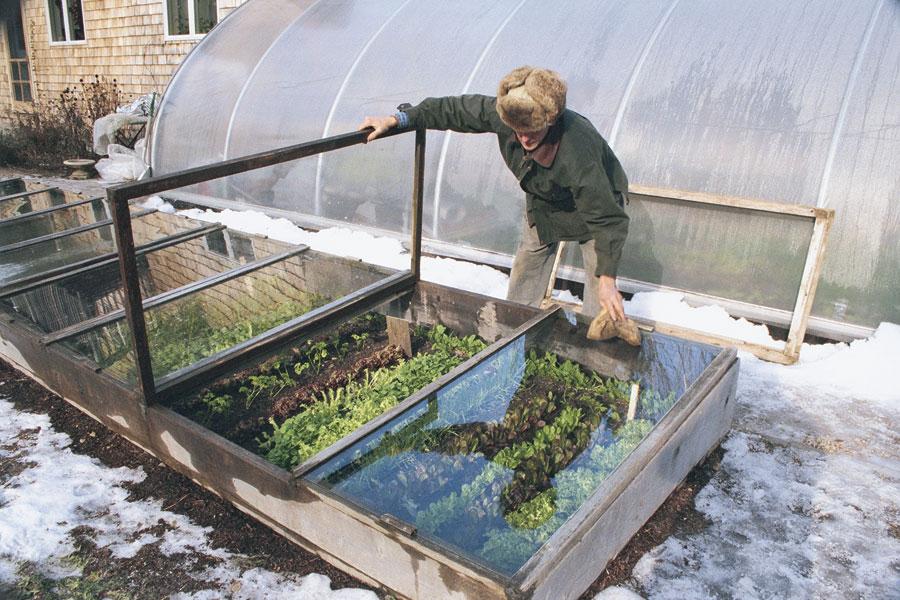Zeleninová záhradka po novom - Obrázok č. 77