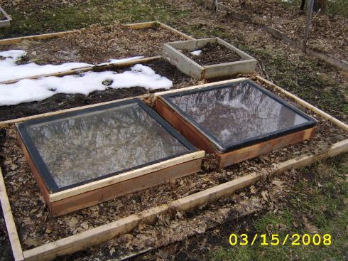 Zeleninová záhradka po novom - Obrázok č. 85