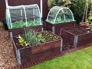 Zeleninová záhradka po novom - Obrázok č. 87