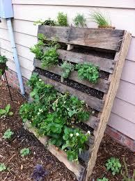 Zeleninová záhradka po novom - Obrázok č. 92
