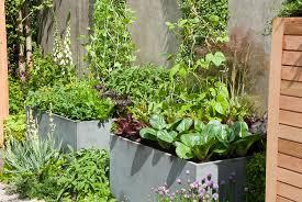 Zeleninová záhradka po novom - Obrázok č. 99