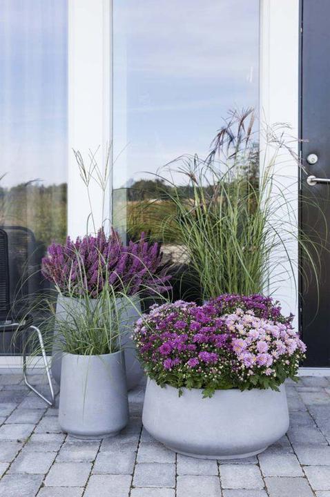Kvetináče pred dvere - Obrázok č. 89