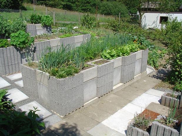 Zeleninová záhradka po novom - Obrázok č. 252