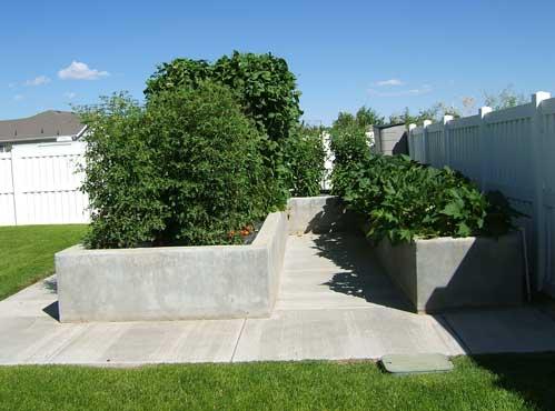 Zeleninová záhradka po novom - Obrázok č. 253
