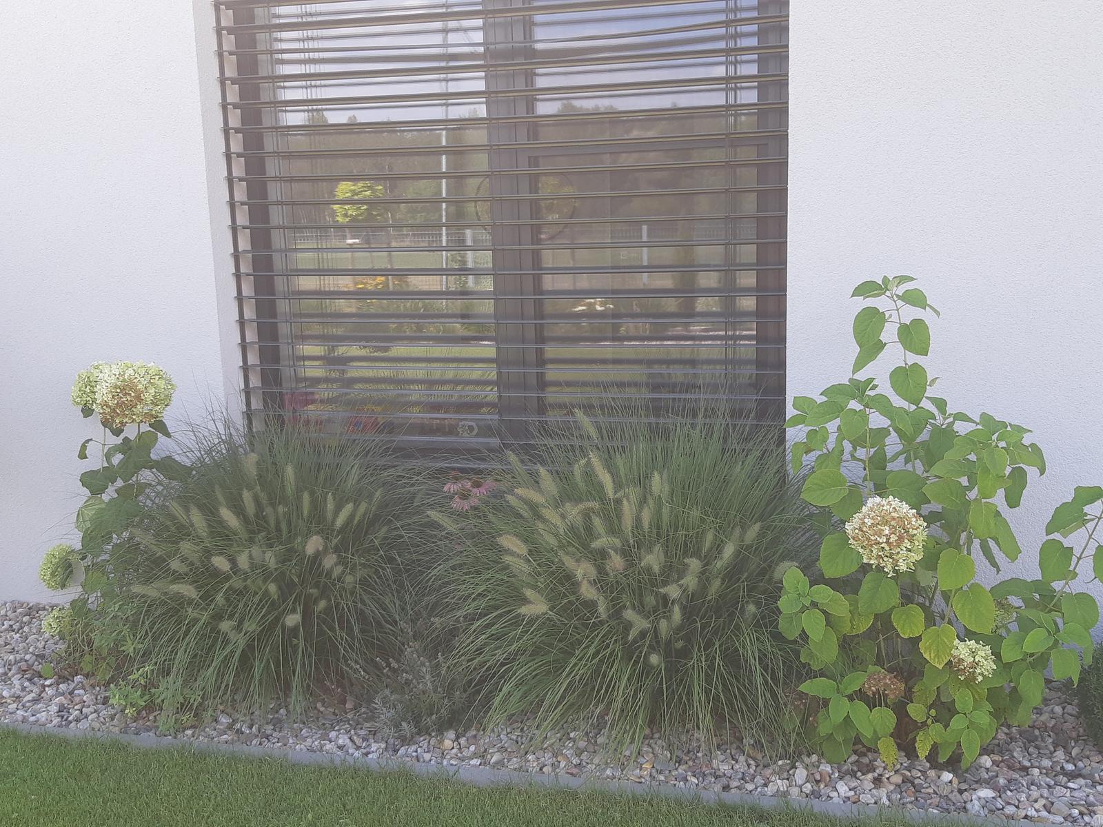 Záhrada - nekonečný príbeh - Obrázok č. 101
