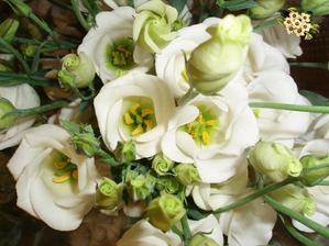 Nechci růže, to jsou trny do manželství, ale tohle je eustoma...podobná a krásná