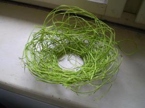 na prstýnky, zkusím do toho proplést březové větvičky jako hnízdo, nevím jestli tu trávu tam nechám, pořád koketuju s myšlenkou tu zlatou svatbu obveslit pár zelenýma prvkama....