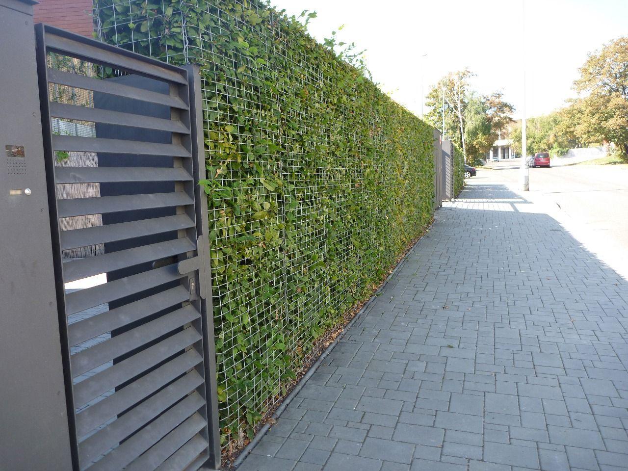 ploty a plotové - inspirace - Obrázek č. 14