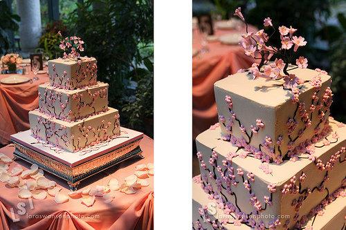 Cukrovinky - torta, muffiny, candy bar ... - Obrázok č. 24
