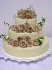 náš svatební dortík.... dnes objednaný (28.5.)