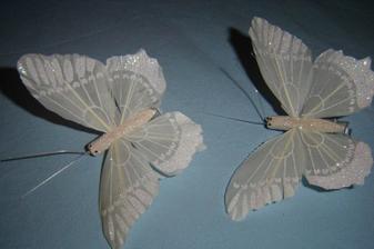 motýlci...nádhera...ještě nevím co s nima....ale asi budou na vázičce....